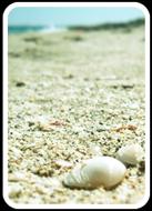 Formentera - Case vacanza in affitto